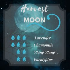 This harvest moon di