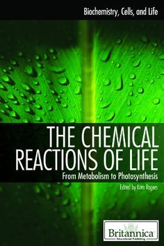 The Chemical Reactions Of Life: From Metabolism To Photosynthesis (Biochemistry Cells And Life) PDF