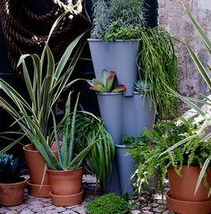 Plantes vertes dans des cache-pots faits de différents matériaux et offerts en plusieurs tailles