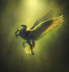The symbolism of Pegasus varies with time. Symbol of wisdom and especially of fame from the Middle Ages until the Renaissance, he became one symbol of the poetry and the creator of sources in which the poets come to draw inspiration, particularly in the 19th century.