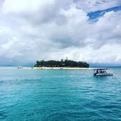 When you are wearing OLU and go snorkel with sea turtle in this beautiful spot 😍! Regram @cope_photography  #journeywitholu #oluaustralia #holiday #travel #travelling #beach #beachlife #ocean #goldcoast #surferparadise #lowisles #portdouglas #seaturtle #snorkeling #skyporn #fashion #instafashion #bikini #instatravel #summer #instasummer #tan #tanning #paradise #goodvibe
