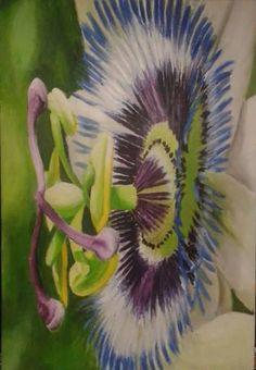 passiflora  acrilico su tela