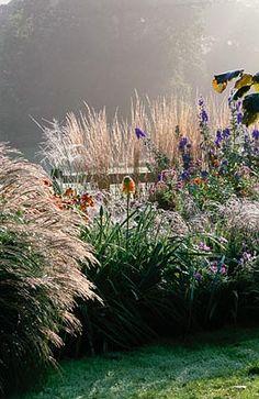 Pettifers Garden Images
