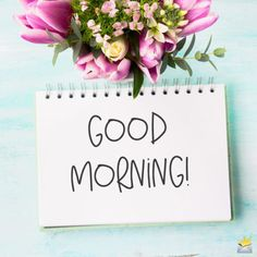 Good Morning Wishes With Rose - [Best HD Images] ~ Good morning inages Good Morning Beautiful Quotes, Morning Love, Good Morning Picture, Good Morning Flowers, Tuesday Morning, Good Morning Greetings, Good Morning Good Night, Good Morning Wishes, Good Morning Quotes