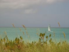 Providenciales, Turks and Caicos by brynn and nate, via Flickr