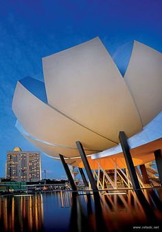 ART SCIENCE MUSEUM, SINGAPORE | See More in Real WoWz #architecture ☮k☮