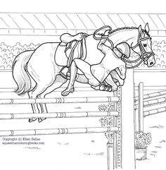16 Best Equestrian Coloring Books Images On Pinterest