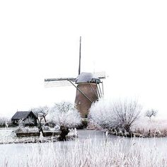 Kinderdijk, Netherlands photo credit  petrakievit