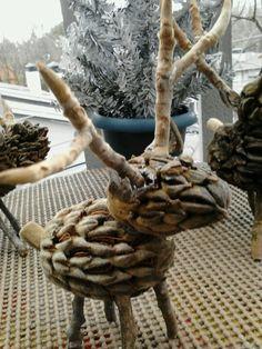 Reindeer from magnolia cones, stems, & twigs