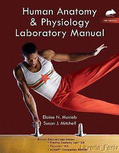 Human anatomy physiology laboratory manual 10th edition pdf human anatomy physiology laborat manualrat version plus masteringap wetext fandeluxe Choice Image