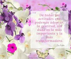 ❤#frases #citas #agradecer #quotes #life #love #friends #family #gratitude #inspiration #motivation #followme/ From www.facebook.com/gonmaye