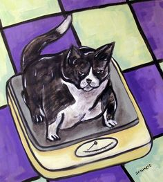 cat diet picture ceramic gift art tile coaster
