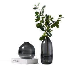 Modern fashion luxury crystal light black glass vase for flower arrangement Modern Flower Arrangements, Vase Arrangements, Flower Shop Design, Black Vase, Buy Crystals, Vase Fillers, Flower Vases, Cactus Flower, Black Decor
