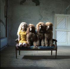 Dutch photographer Hellen van Meene is one of the leading Dutch photographers…