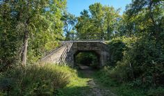 Trail Guide to Potter's Creek Conservation Area - Bay of Quinte Tourism