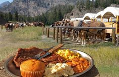 Roosevelt Lodge Old West Dinner Cookout and horseback ride at Yellowstone National Park Yellowstone Vacation, West Yellowstone, Yellowstone National Park Tours, Wyoming Vacation, Signal Mountain Lodge, National Park Lodges, American National Parks, Food Park, Jackson Hole Wyoming