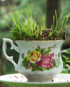 Teacup garden...great idea for chipped cups that are too pretty to throw away.