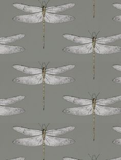 Demoiselle, a feature wallpaper from Harlequin, featured in the Palmetto collection.Demoiselle, a feature wallpaper from Harlequin, featured in the Palmetto collection. Harlequin Wallpaper, Pattern Wallpaper, Wallpaper Ideas, Dragonfly Wallpaper, Decoupage, Kitchen Wallpaper, Cloakroom Wallpaper, Downstairs Toilet, Fashion Wallpaper