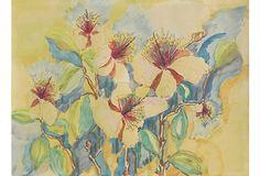 Flowers in the Sun on OneKingsLane.com
