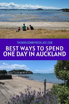 Auckland has endless options for adventure and fun. This world class city is right on the water and is built on over 50 volcanoes - making it both beautiful and unique. Find out the best ways to spend a day in Auckland, no matter what you are into.   The World on my Necklace #auckland #newzealand #aucklandguide New Zealand Itinerary, New Zealand Travel Guide, Travel Guides, Travel Tips, Travel Articles, Travel Abroad, Travel Goals, Ultimate Travel, Wanderlust Travel