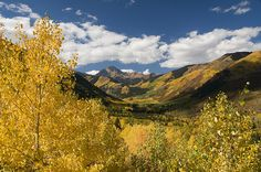 Do you really have to ask why I want to move here? Colorado in the fall