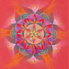 The Passion Mandala Print on PaperNew House by mandalaway on Etsy