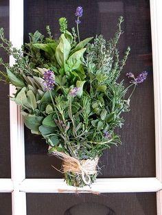 Ashley M.  Herb bridesmaid bouquet
