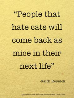 cute quotes about cats