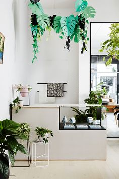 Melbourne-based botanical wares studio IVY MUSE have opened the doors to their inredible new Emporium space. Launched on Friday, the design...