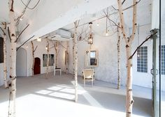This forest-like beauty salon in Osaka has birch trees wedged between the floor and ceiling (via WOOD)