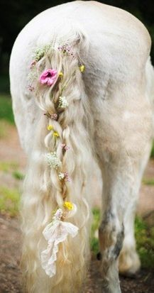 White #weddinghorse flower crown tail ToniK ❀Flowers in their coats❀ Heidi of White Loft Studio