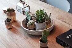 de Zaktus | Inspiration | dinnertable Green, Plants, House, Home, Plant, Homes, Planets, Houses