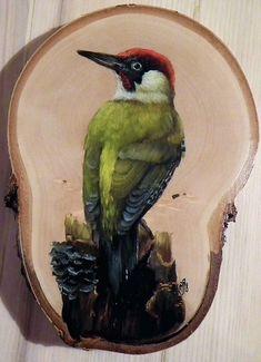 Arte Naturalista, Bobs Video, Branch Art, Pintura Country, Celtic Designs, Vintage Birds, Wood Slices, Bird Species, Pebble Art