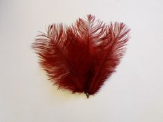 SALE Burgundy Ostrich Feathers WAS 4.50 NOW by simplysilverbyheena