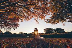 Centennial Park, Sydney, australia, photography, wedding, picture, romantic