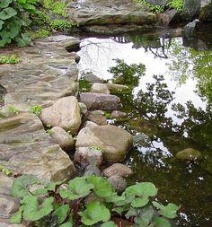 bassin avec un bord en pierres naturelles