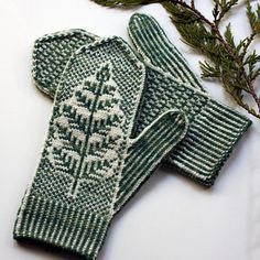 Inspired by underbrush on the Wild Pacific Trail, Brackthaw features a botanical motif emerging from the ice and a small allover design on the palm. Knitted Mittens Pattern, Knit Mittens, Knitted Gloves, Knitting Socks, Hand Knitting, Knitting Patterns, How To Purl Knit, Fair Isle Knitting, Knitting Projects
