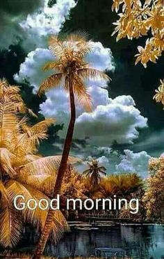 All the articles based on Wallpapers can be viewed on Webgranth, under this category. Happy Morning Quotes, Good Morning Beautiful Quotes, Good Morning Roses, Good Morning Images Hd, Good Morning Texts, Morning Morning, Good Morning Gif, Good Morning Picture, Good Morning Messages