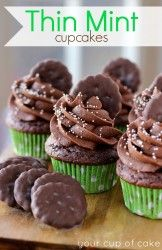 Thin Mint Cupcakes - Your Cup of Cake Making these when cookies come in to top them right ;) ok I had to pin these.because i absolutely LOVE thin mints! and cupcakes. Cupcake Recipes, Cupcake Cakes, Dessert Recipes, Cupcake Ideas, Cup Cakes, Mini Cakes, Yummy Treats, Sweet Treats, Yummy Food