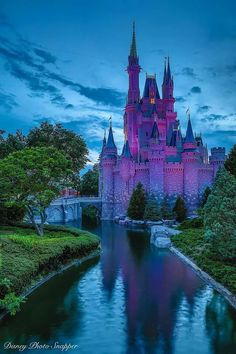 Such a stunning view of Cinderella's Castle!  WDW Shutterbug remains to be one of my favorite photographers!