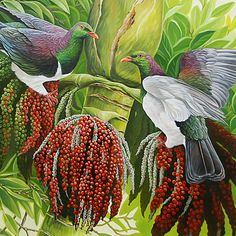 craig platt nz bird artist and painter of oil on canvas