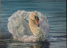 Swan - oil on canvas