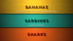 Bananas, Sardines and Sharks - http://www.dravenstales.ch/bananas-sardines-and-sharks/