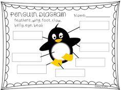 penguins on pinterest penguins penguin books and dice games. Black Bedroom Furniture Sets. Home Design Ideas