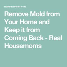 how to clean mould from fridge