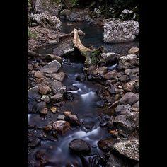 Springbrook National Park - Cave Creek
