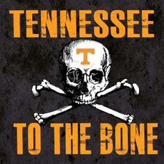 1000 images about Good Ole Rocky Top on Pinterest