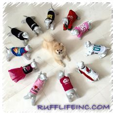 Shirts for your fur baby ... Many styles to choose from. Use coupon code PAWS20 for 20% off @ Rufflifeinc.com
