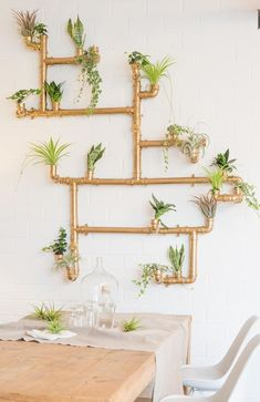 instructions for a vertical wall made of copper pipes, garden DIYs / jungle diy: vertical garden made of copper pipes via // - Vertical Plant Wall, Plant Wall Diy, Plant Decor, Diy Wall, Vertical Bar, Design Exterior, Decoration Plante, Office Plants, Deco Floral
