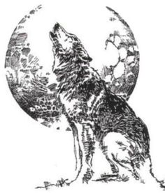 Grey Ink Moon and Wolf Tattoo Design : Wolf Tattoos